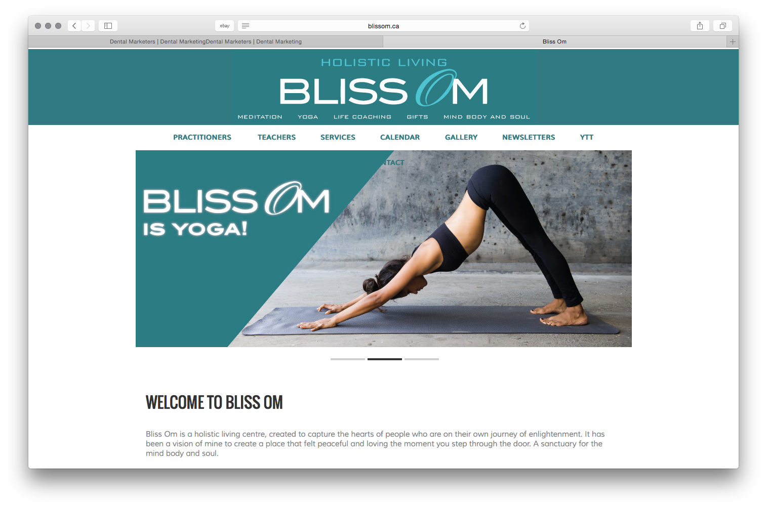Bliss OM Holistic Healing Centre Website